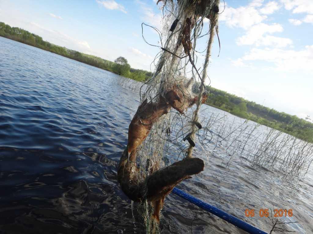 на рыбалку в вязниковский район