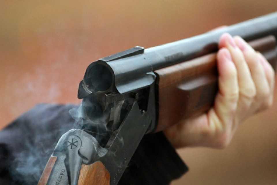 ВПетушинском районе отец застрелил родного сына