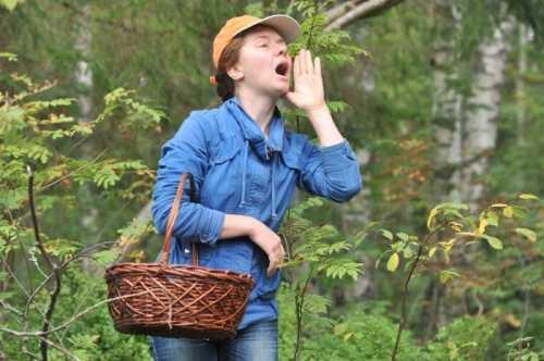 На Херсонщині розпочався грибний сезон: рятувальники займаються розшуком грибників, які загубилися у лісі