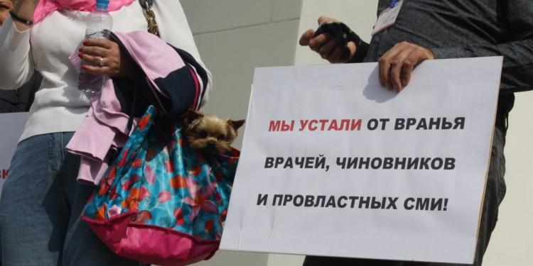 Как митинг Плаксина и выборы повлияли на Владимирскую область