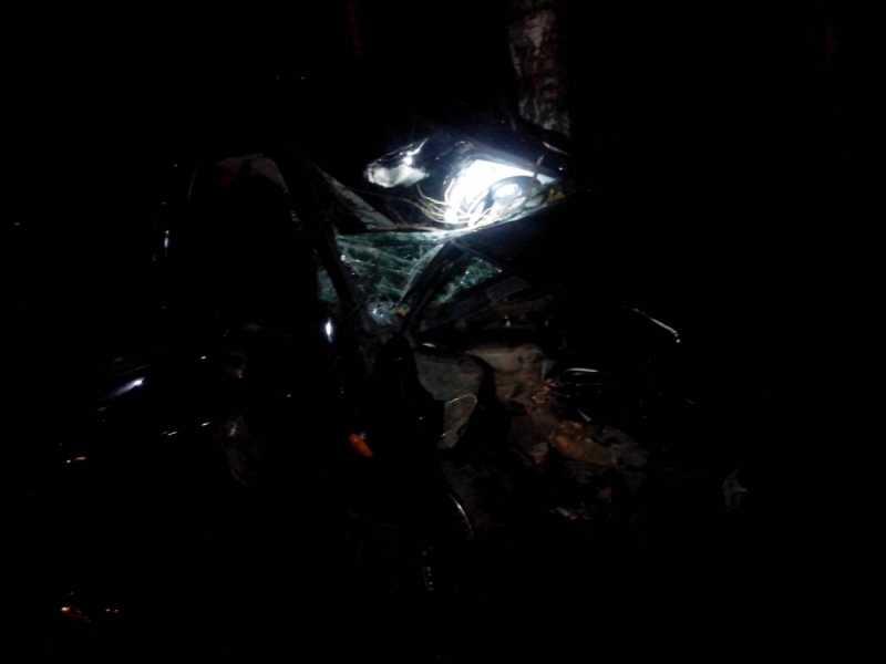 ВКиржачском районе «Лада Приора» врезалась влося