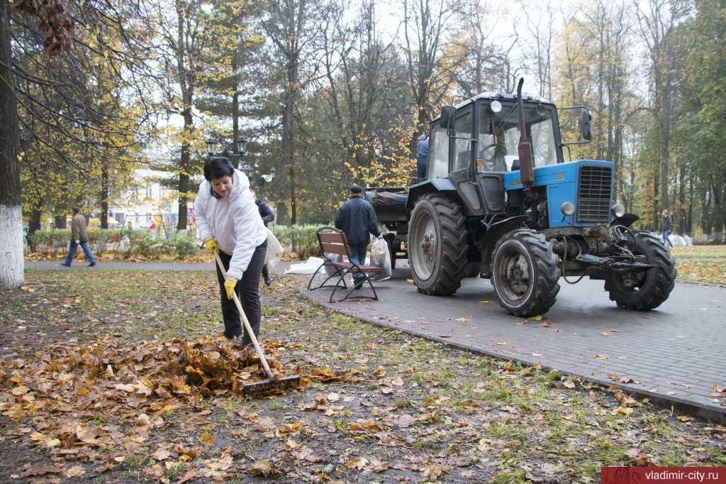 фото с сайта администрации Владимира