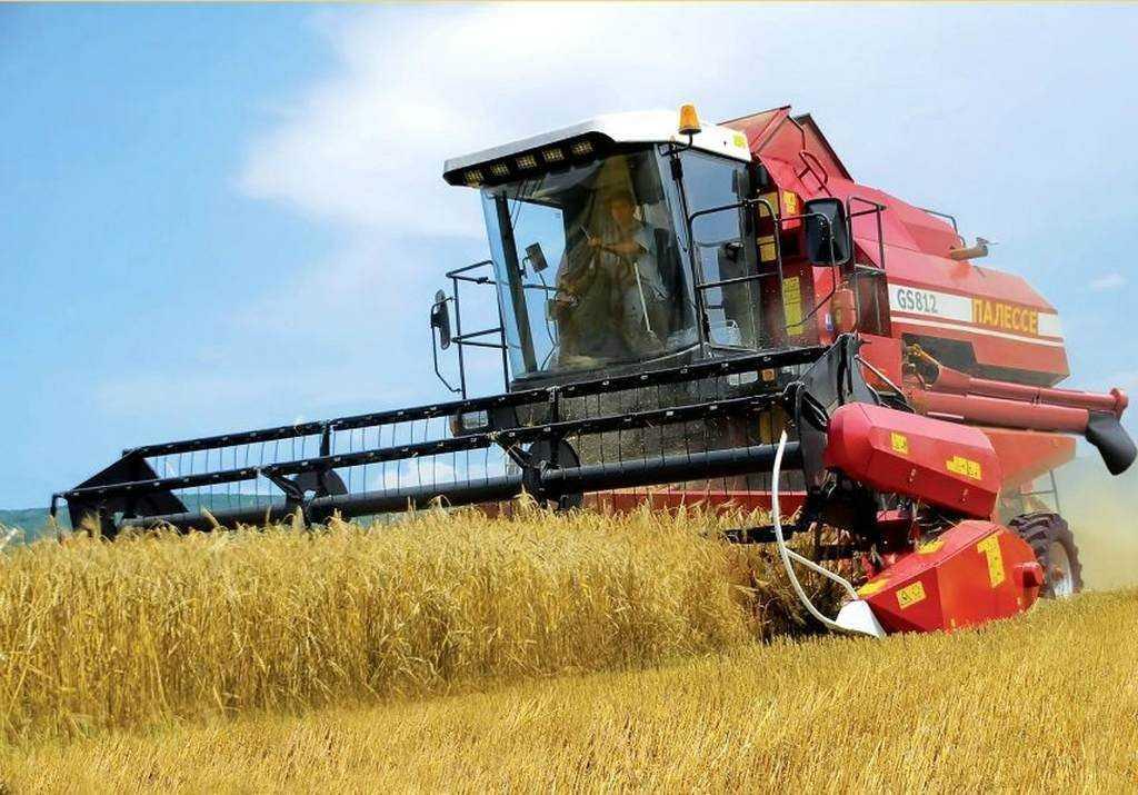 Сельское хозяйство в Беларуси