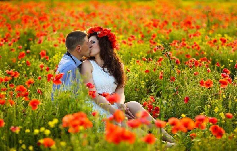 влюбленные в поле