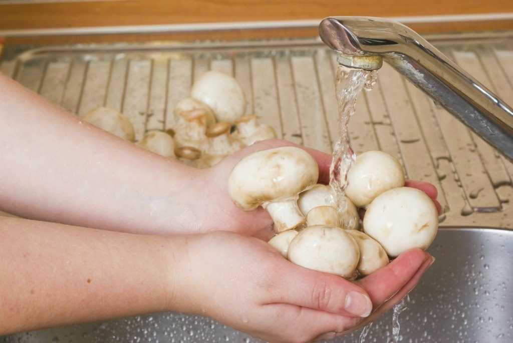 Мытье грибов