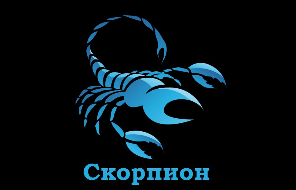 декабрь 2019 скорпион
