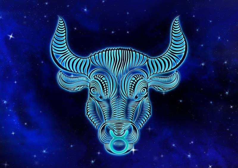гороскоп январь 2020 телец