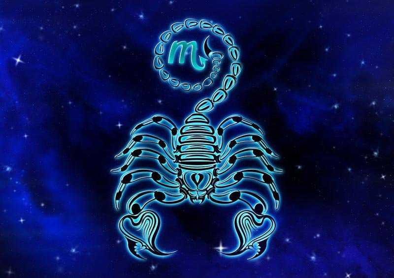 гороскоп январь 2020 скорпион