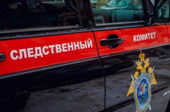 Житель Юрьев-Польского района на автомобиле умышленно сбил своего соседа по дачному дому