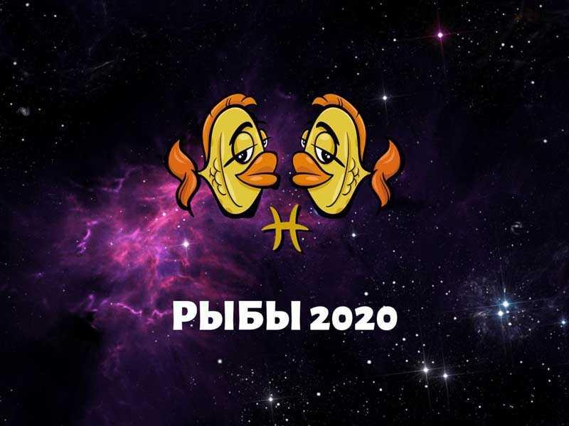 рыбы февраль 2020 года