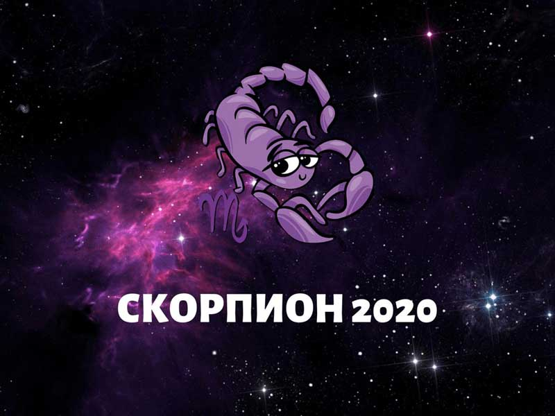 скорпион февраль 2020 года