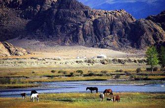Почему Монголию не приняли в СССР