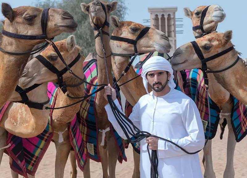 Завидный жених  Принц Дубая Хамдан
