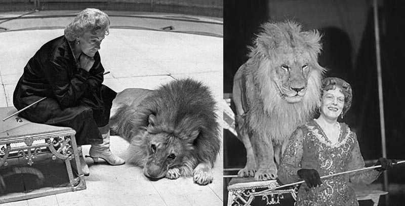 Бугримова посвятила цирку и прожила яркую, насыщенную жизнь