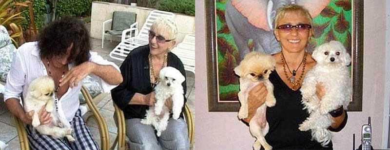 В настоящее время супруга Валерия Леонтьева стрижет собак, то есть оказывает услуги груминга