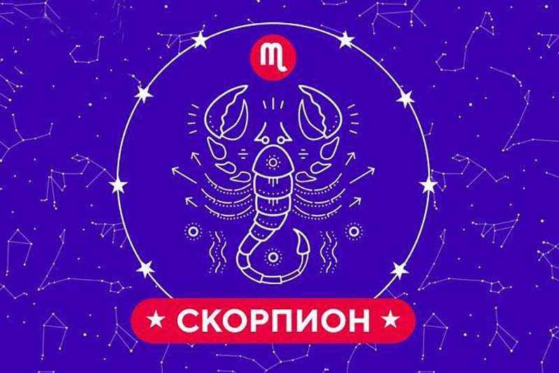 гороскоп май 2020 скорпион