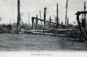 Загадочное появление и исчезновение Анненгофской рощи