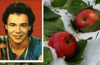 Каким был истинный смыл песни «Яблоки на снегу»