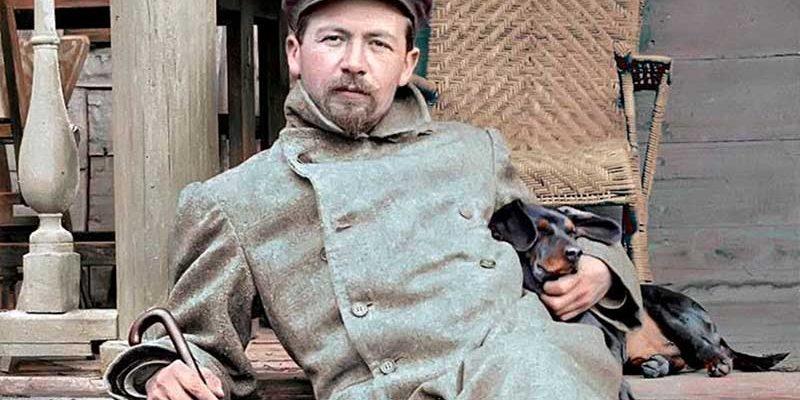 История жизни Чехова с мангустами