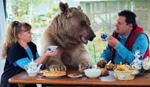 Как супруги Пантелеенко вот уже 28 лет живут вместе с медведем