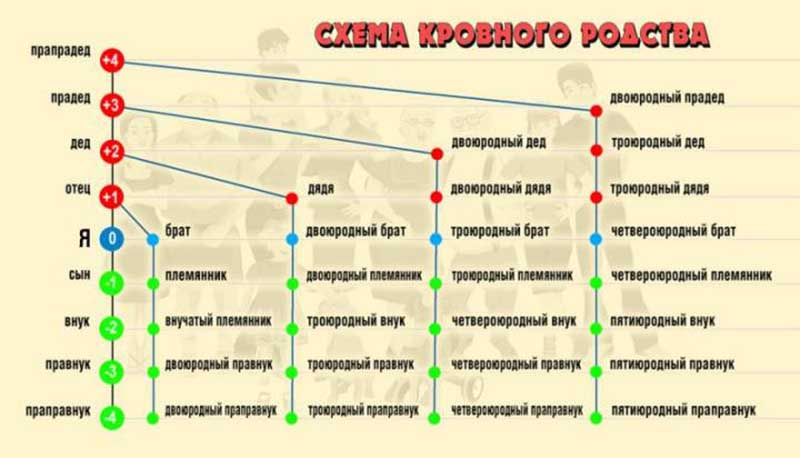 Русские люди различают три разновидности родства.