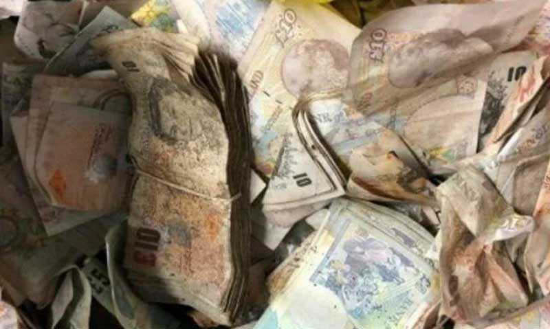 Когда хозяева посчитали находку, сумма оказалась внушительной – 20 тысяч фунтов.