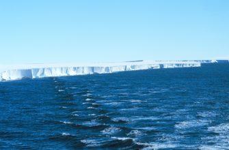 В Антарктиде под ледниками найдены неизвестные существа