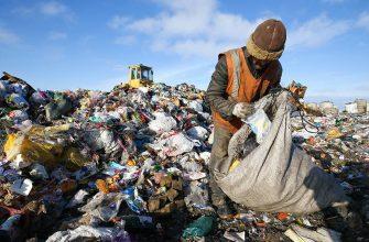 Старые мусорные полигоны в России предложили рекультивировать за счет населения
