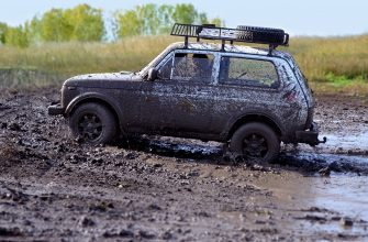 Россияне назвали причины, по которым не моют свои машины