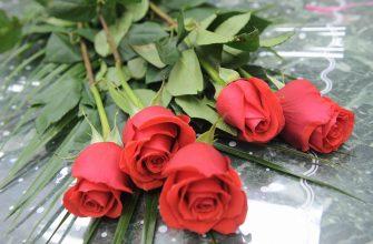 Новые исследования показали, какие цветы российские женщины хотят получить на 8 марта