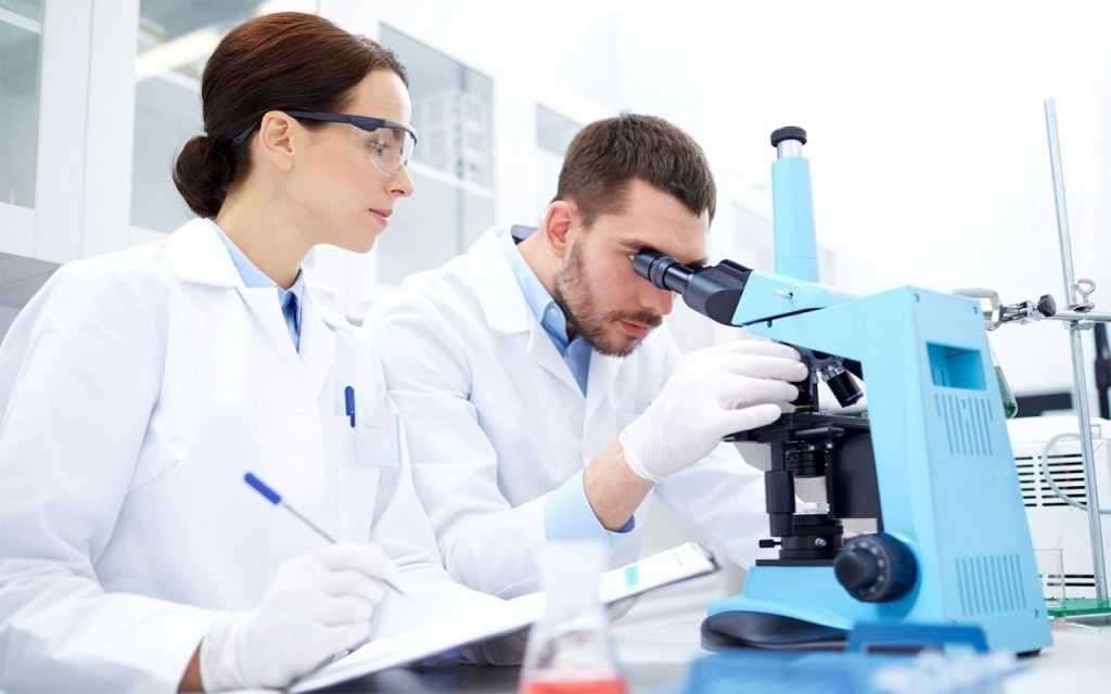 Власти Новосибирска считают, что молодым ученым в РФ зарплаты в 17-20 тысяч будет достаточно