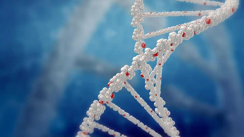 В России зарегистрированы первые случаи заражением новым штаммом коронавируса из ЮАР