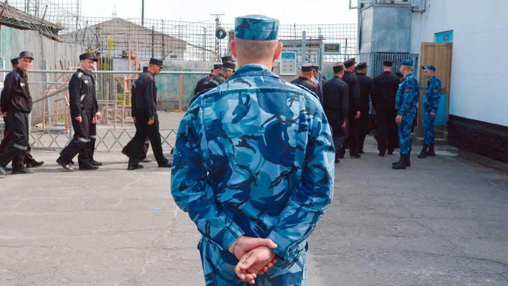 ФСИН планирует использовать заключенных для расчистки Арктики