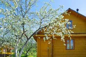 Главный санитарный врач призывает россиян оставаться дома на майских праздниках