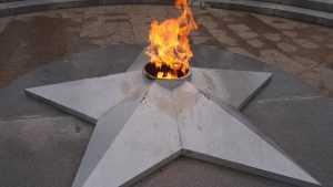 В Подмосковье задержали женщину, готовившую еду на Вечном огне