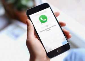 Российских пользователей WhatsApp предупредили о недостаточной защите персональных данных