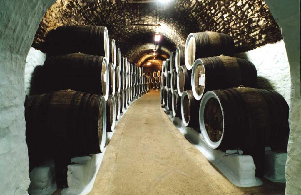 Сегодня на полуострове Крым открыли центр винного туризма