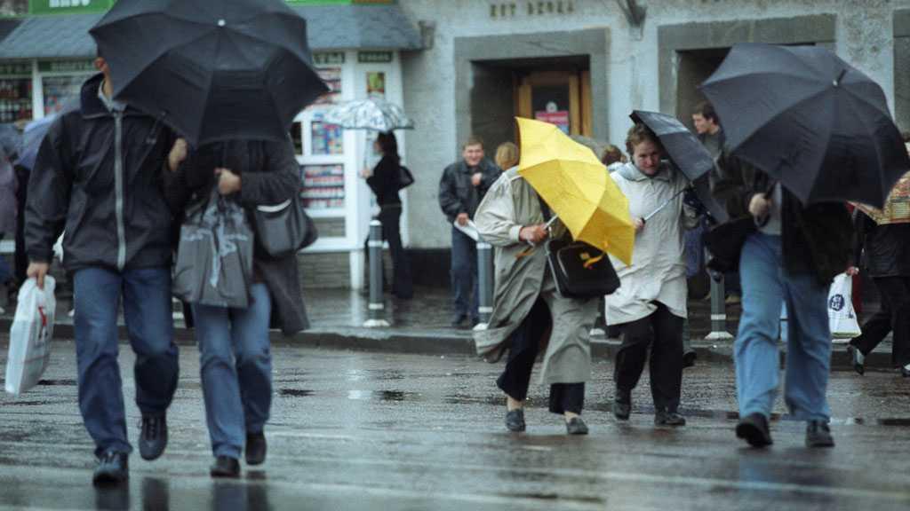 Желтый уровень опасности по погоде объявили в Москве до вечера 7 мая