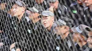 ФСИН предложила заменить трудовых мигрантов заключенными