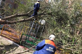 Около 80 тысяч жителей Дагестана остались без электричества
