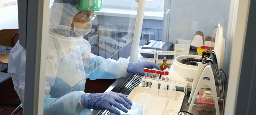 Выявлен новый и самый опасный штамм коронавируса – лямбда