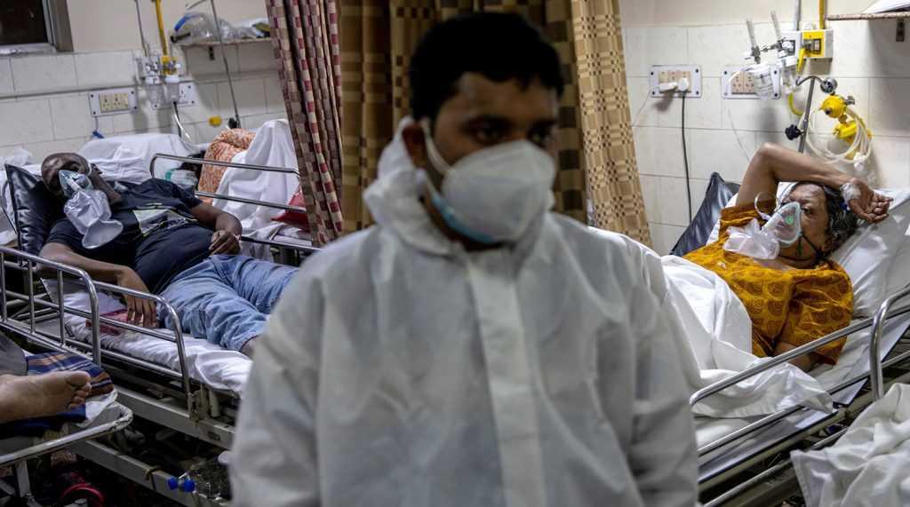 Мнение эксперта о новом индийском вирусе Нипах