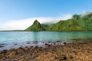 Япония хочет вернуть Курильские острова при Путине
