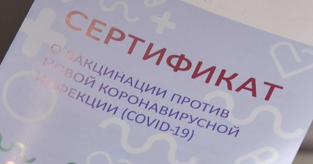 В России заблокировано около 150 сайтов о продаже сертификатов о вакцинации