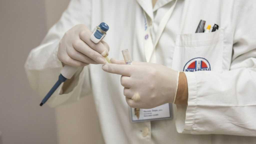 Вирусологи рассказали, какой риск попадания в Россию оспы обезьян