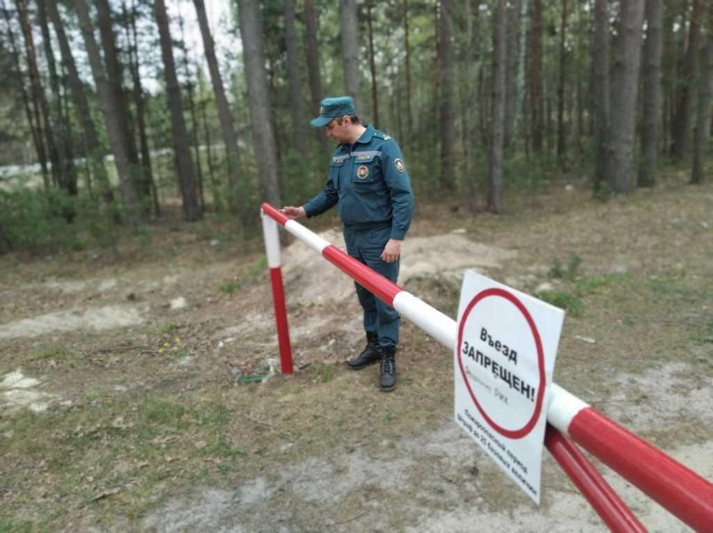 Из-за угрозы пожаров закрыли для посещения леса в Московской области