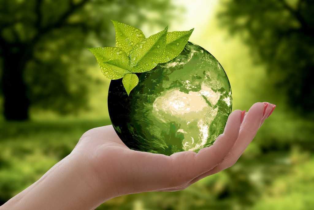 Россия хочет заключить соглашение с США по экологическим вопросам