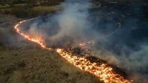 Пожарные Мордовии сдерживают распространение огня