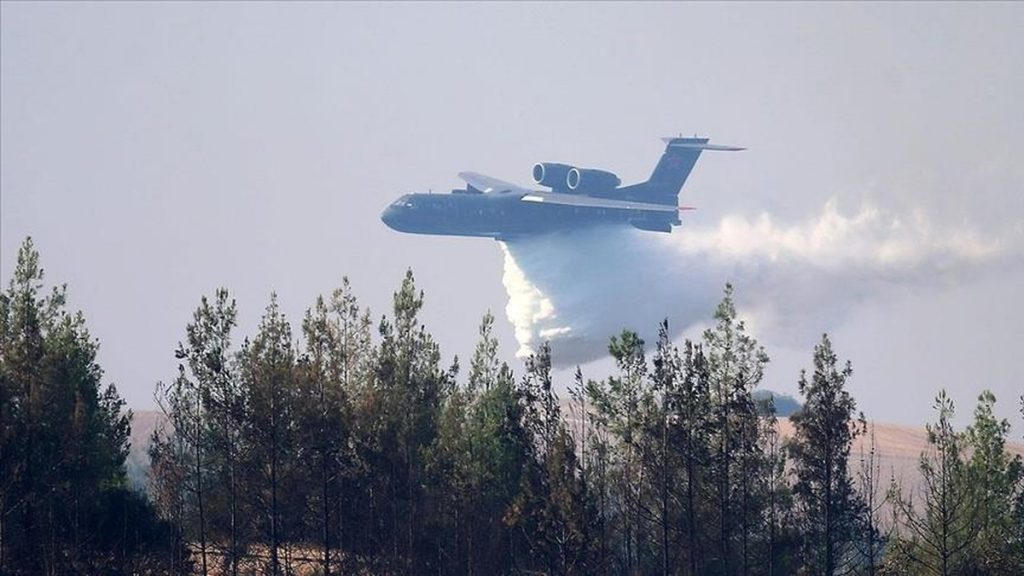 Самолёт, арендованный у РФ, разбился в Турции