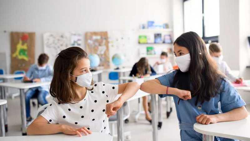 Школьников и студентов не будут переводить на дистанционное обучение